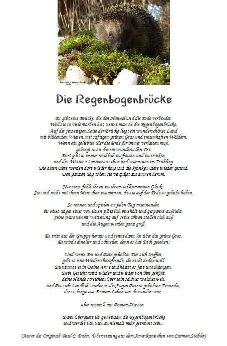 Igel gedicht