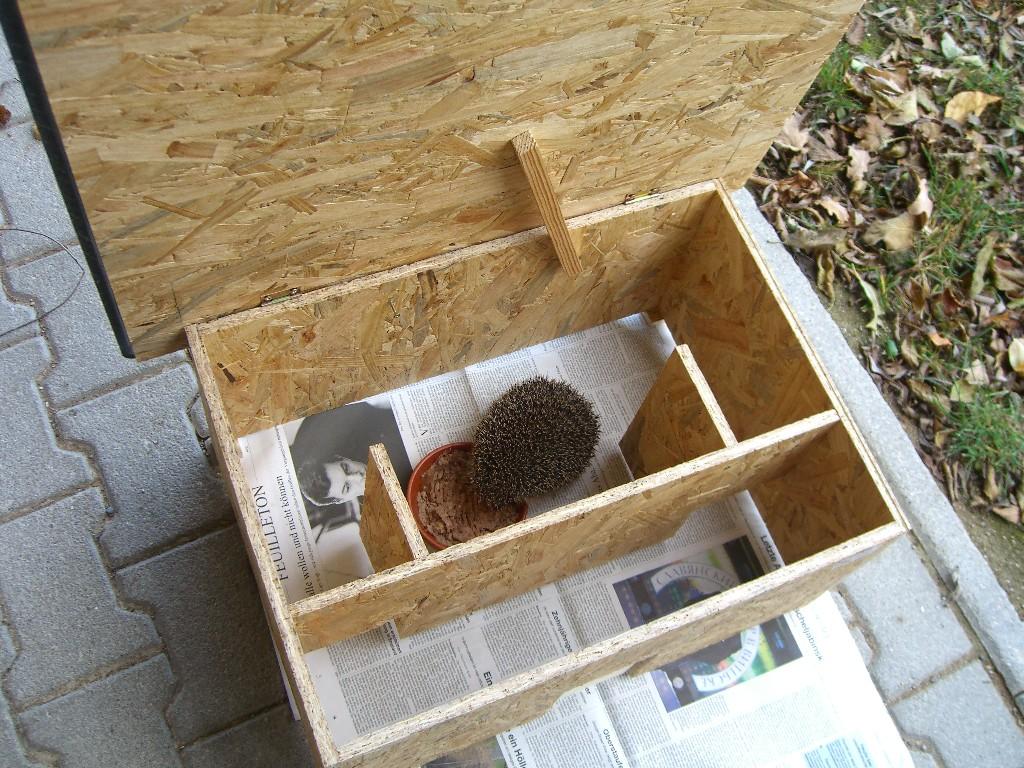 katzensicheres igelhaus - igelstation weilheim